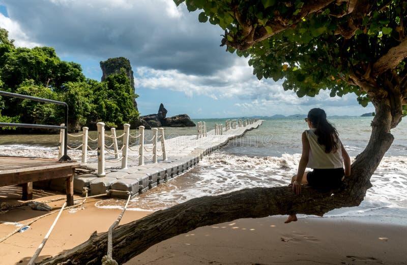 El sentarse adolescente en el árbol que mira el embarcadero y la playa fotografía de archivo libre de regalías