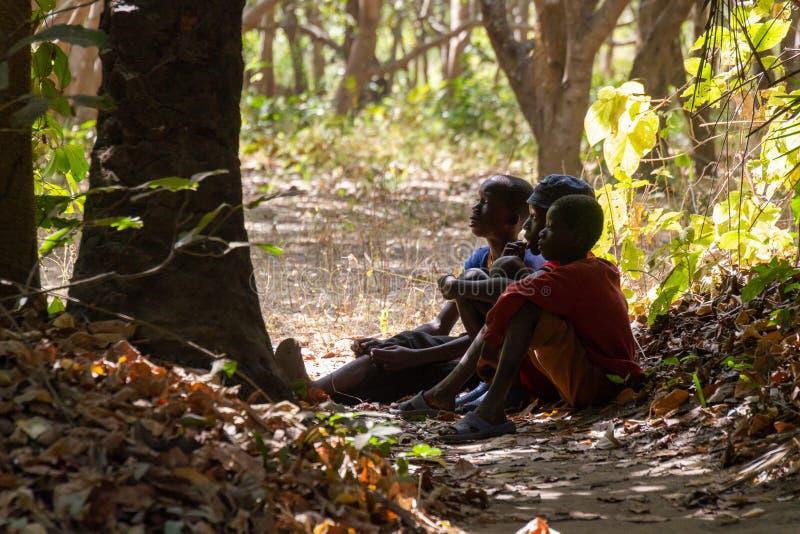 El sentarse de Childeren pacífico en bosque imagenes de archivo