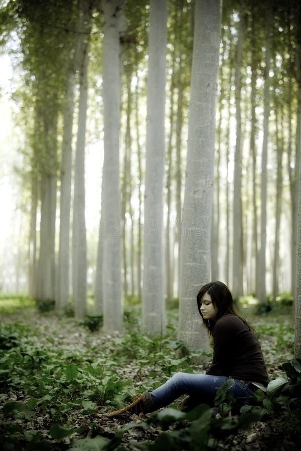 El sentarse en el bosque imagen de archivo