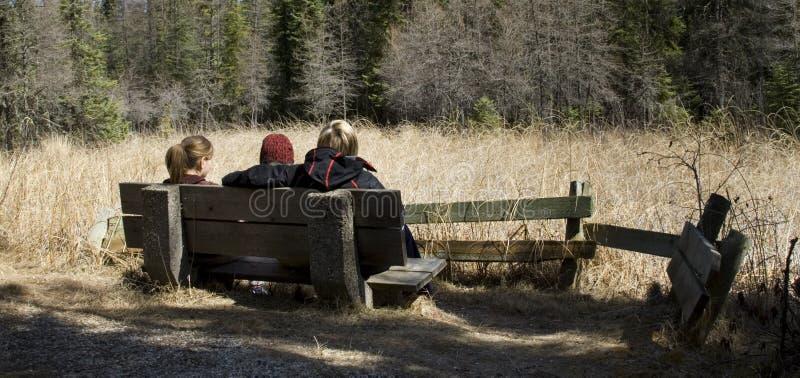 El sentarse en un banco en bosque fotografía de archivo libre de regalías
