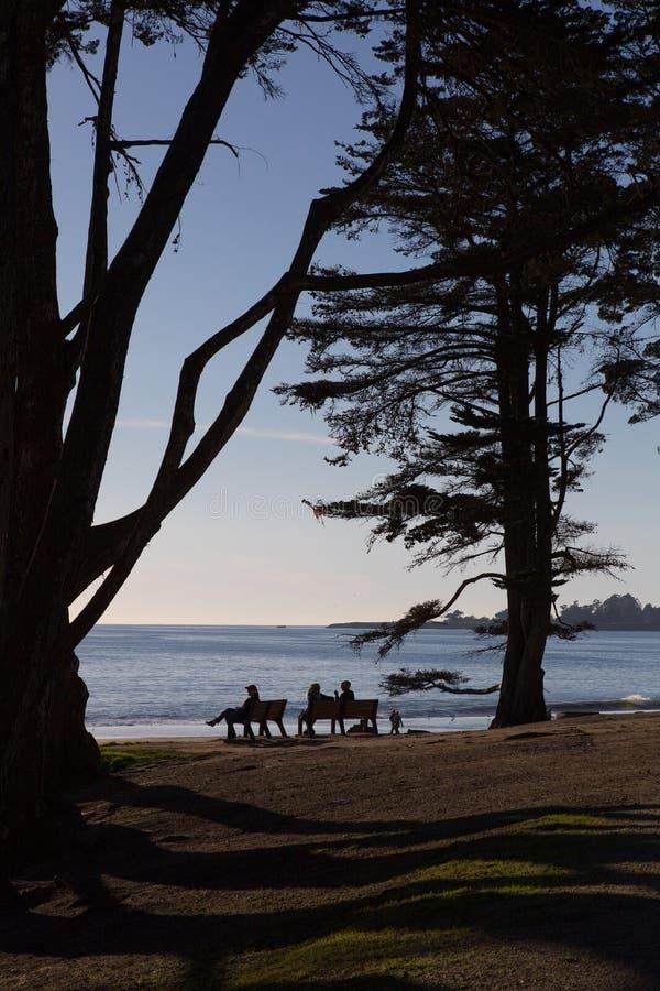El sentarse en un banco que pasa por alto una playa arenosa y el océano fotografía de archivo