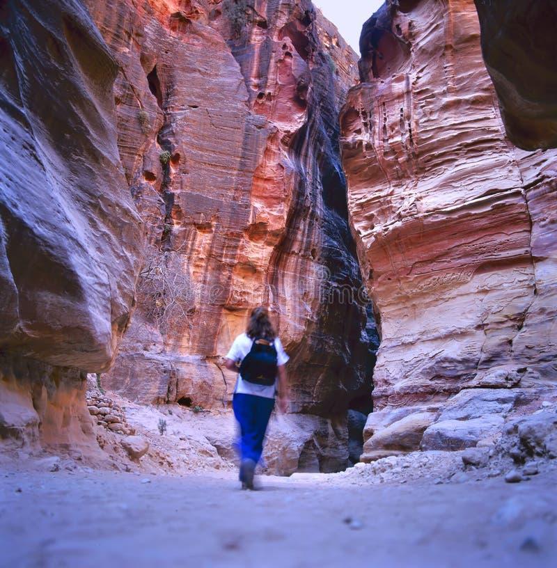 El Siq, Petra, Jordania fotografía de archivo