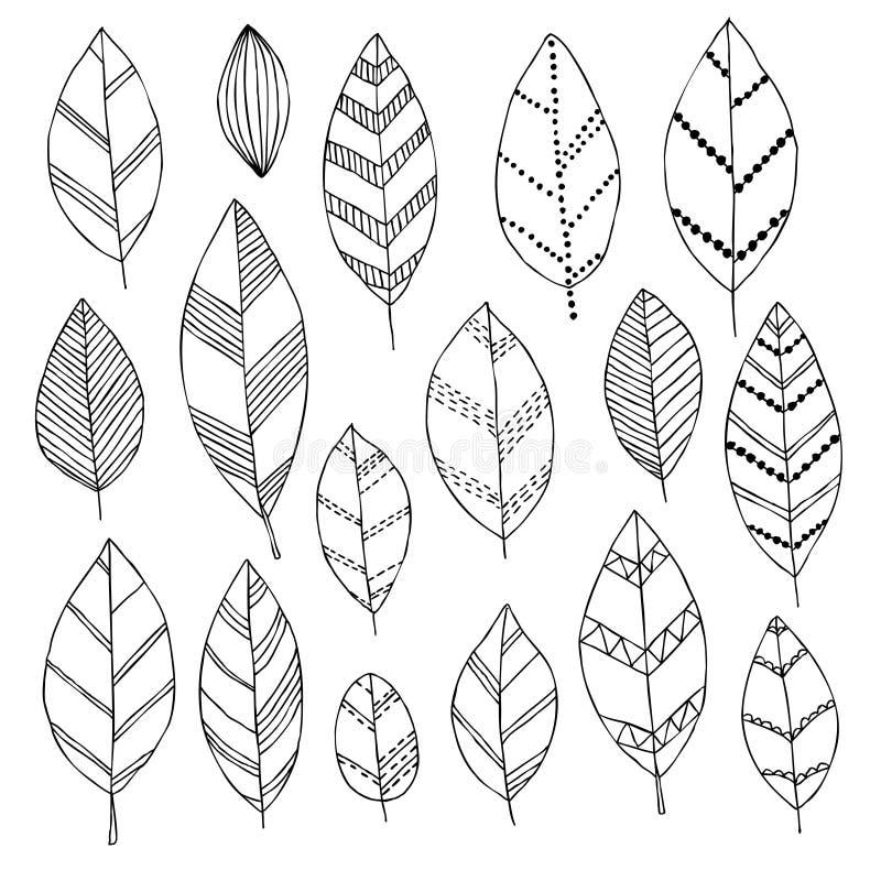 El sistema blanco y negro hermoso del garabato dibujado mano se va libre illustration