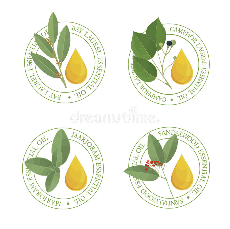 El sistema de aceite esencial etiqueta el SE libre illustration