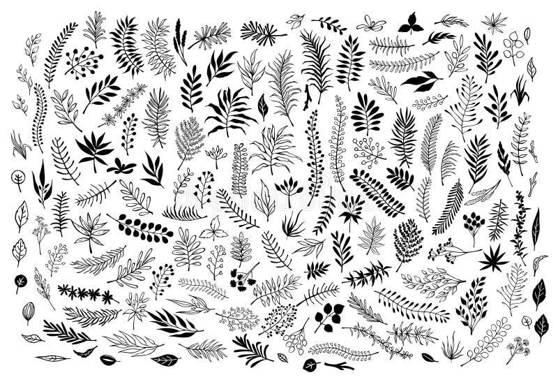 El sistema de la colección de silueta dibujada mano floral y de ramitas resumidas ramifica ilustración del vector