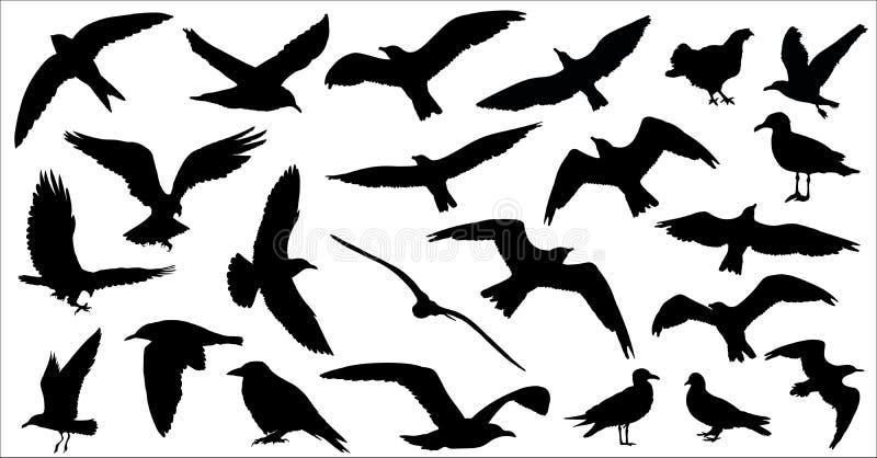 El sistema de pájaros siluetea 23 en 1 en el fondo blanco stock de ilustración