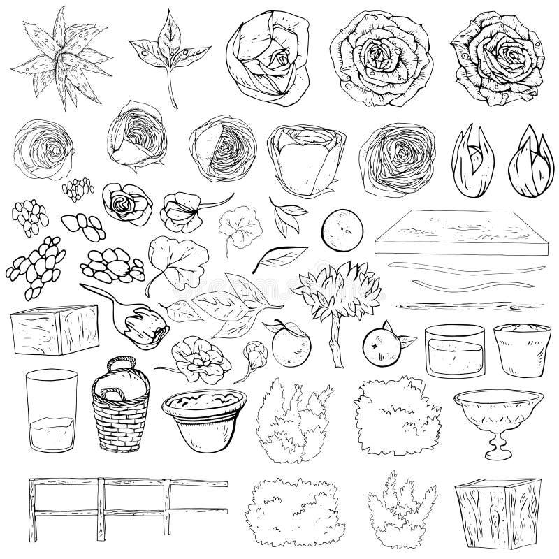 El sistema del ejemplo del vector de casarse decoraciones garabatea blanco y negro Plantas aisladas en el fondo blanco Flores, ar stock de ilustración