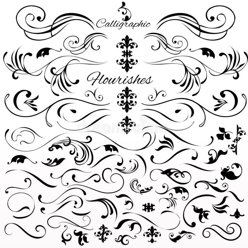 El sistema del vector de vintage diseñó elementos o flourishes caligráficos libre illustration