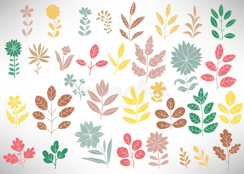 El sistema floral en colores pastel de los elementos para el diseño, rama de árbol, arbusto, planta, hojas, flores, ramas, pétalo ilustración del vector