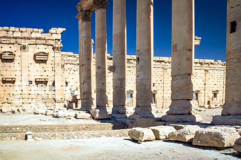 El sitio del Palmyra imagen de archivo libre de regalías