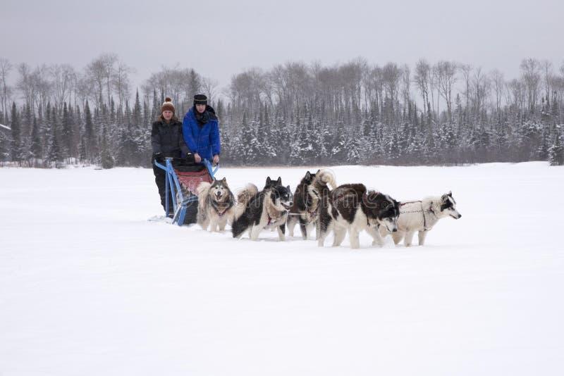 El sledding del perro de la madre y de la hija imagen de archivo