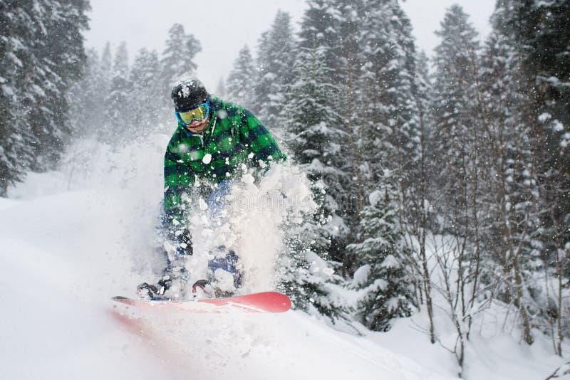 El Snowboarder en el bosque que salta creando nieve salpica imagen de archivo libre de regalías