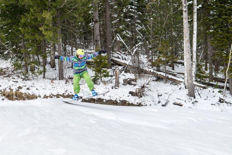 El Snowboarder que salta en las montañas en un fondo del bosque fotos de archivo