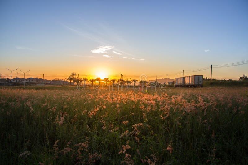 El sol de la mañana tiene una luz anaranjada hermosa imágenes de archivo libres de regalías
