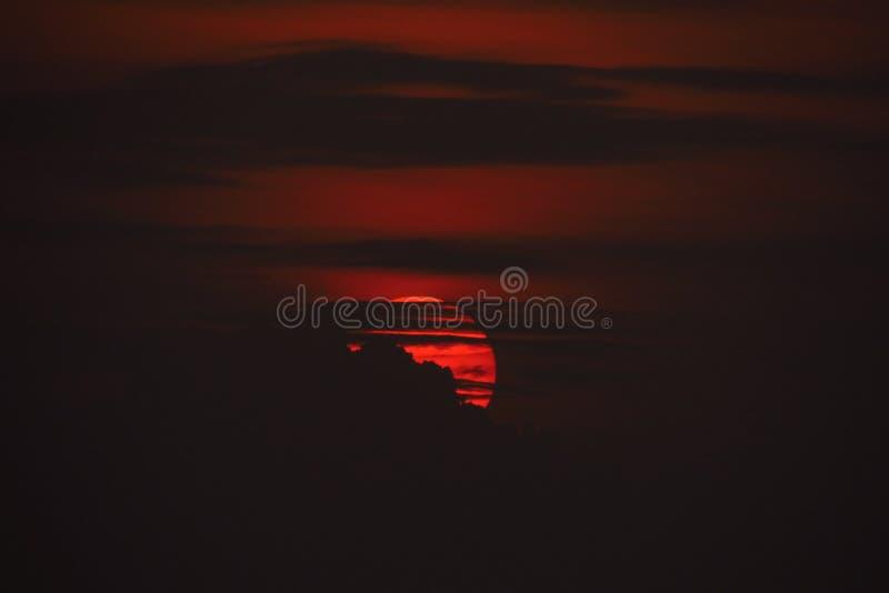 El sol de la tarde fotografía de archivo libre de regalías