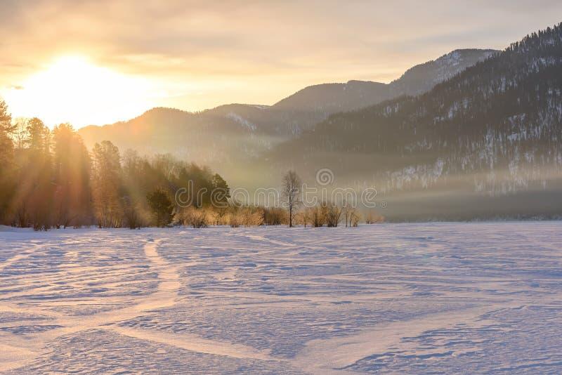 El sol del invierno de las montañas de la salida del sol irradia árboles imagenes de archivo