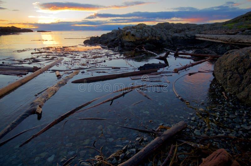 El sol naciente enciende las nubes distantes y la madera de deriva próxima a lo largo de la costa de la península meridional de S imagen de archivo