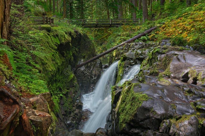 El solenoide Duc cae en el parque nacional olímpico, Washington imagen de archivo