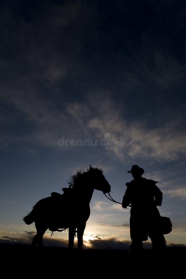 El soplar de la melena del vaquero y del caballo fotos de archivo