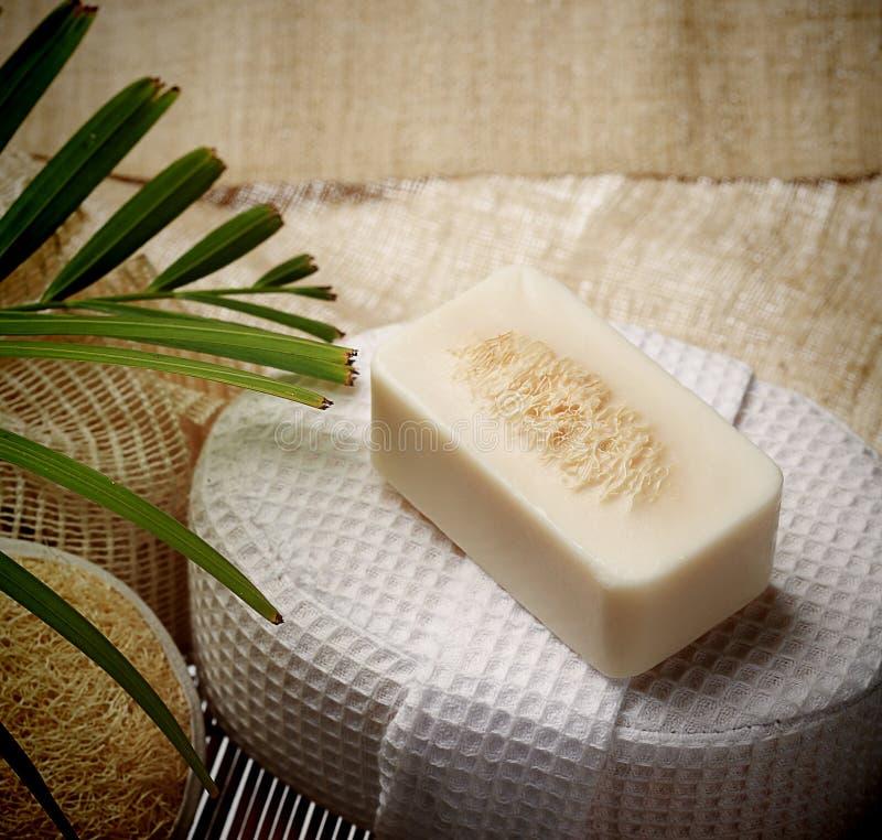 El special friega el jabón en el balneario fijado para la piel sana foto de archivo libre de regalías