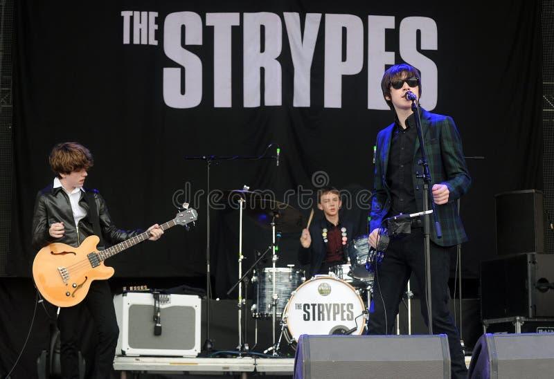 El Strypes fotografía de archivo