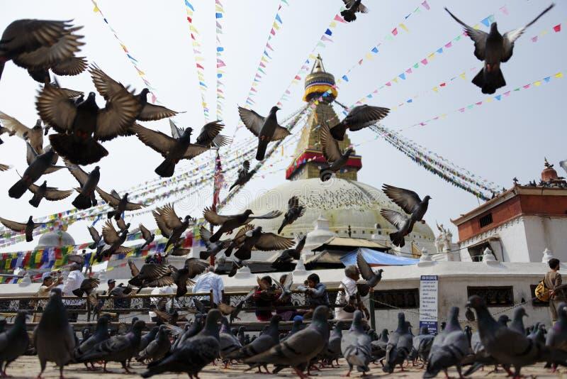 Stupa de Bodhnath en Katmandu, Nepal imagen de archivo