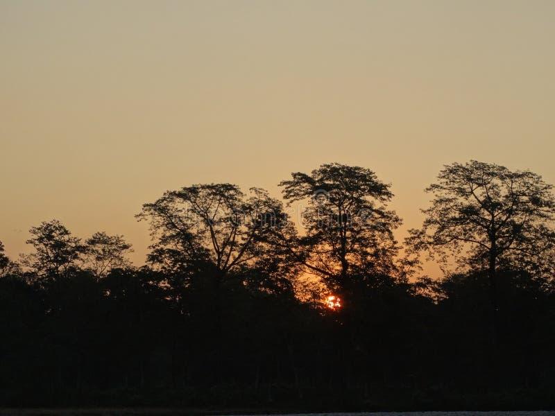 El Sun que enarbola imagenes de archivo