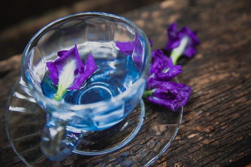 El té de consumición caliente de la flor violeta restaura la bebida tailandesa de la hierba en el fondo de madera imágenes de archivo libres de regalías