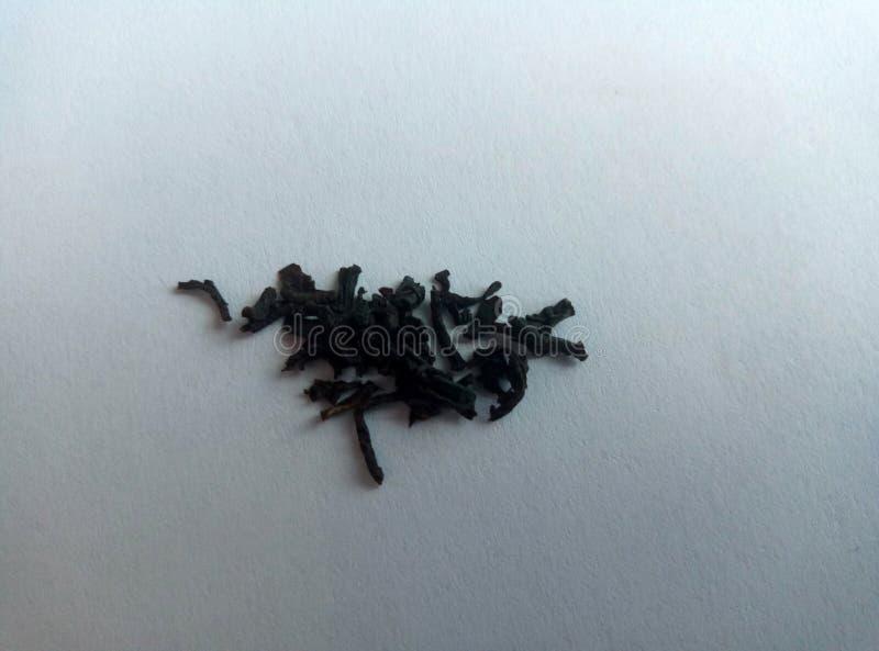 El té de las natillas es frondoso negro imágenes de archivo libres de regalías