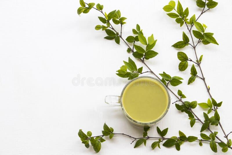 El té verde caliente de las bebidas sanas herbarias, ordeña fotos de archivo