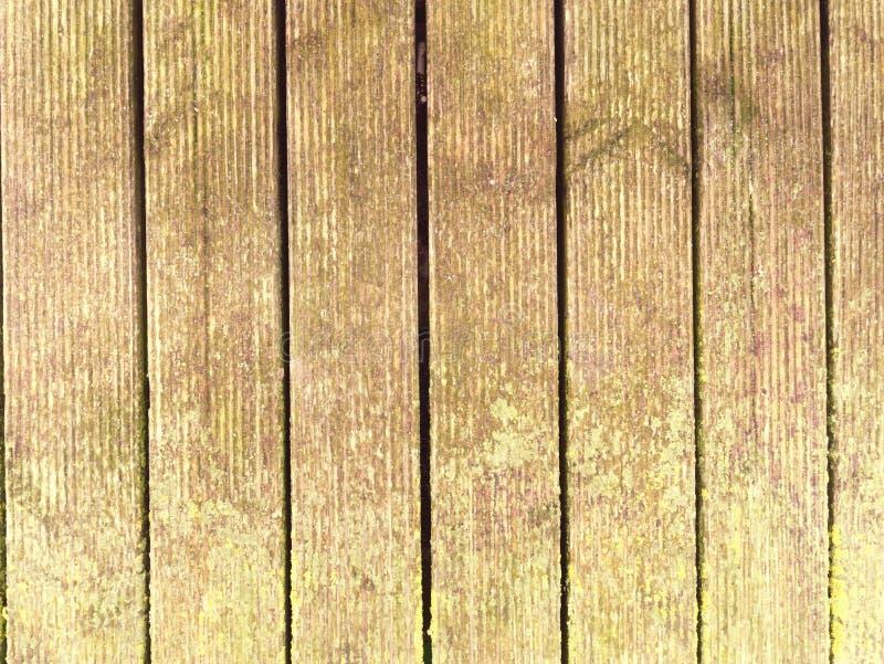 El tablero de madera duro mojado con la erosión se opone a la superficie Piso de madera del embarcadero de la playa imagen de archivo