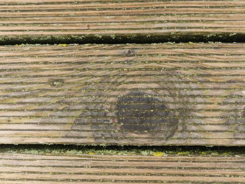 El tablero de madera duro mojado con la erosión se opone a la superficie Piso de madera del embarcadero de la playa foto de archivo