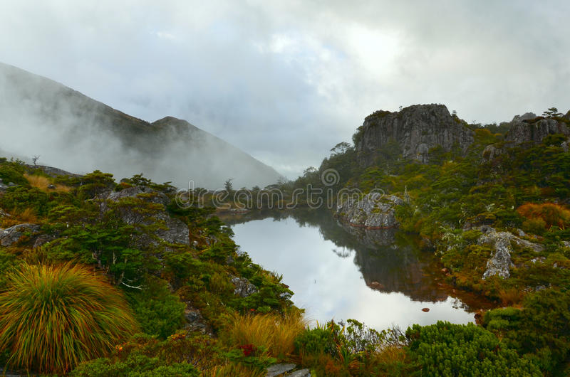 El Tarn cerca de Fenella Hut, parque nacional de Kahurangi foto de archivo