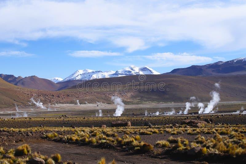 El Tatio喷泉领域,阿塔卡马沙漠,智利 免版税库存图片