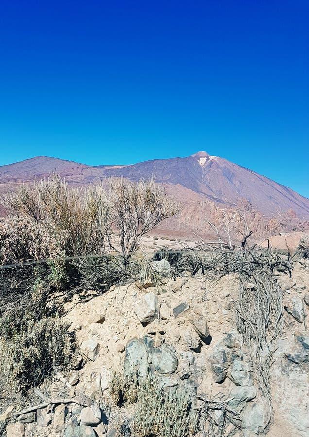 EL Teide stockbilder