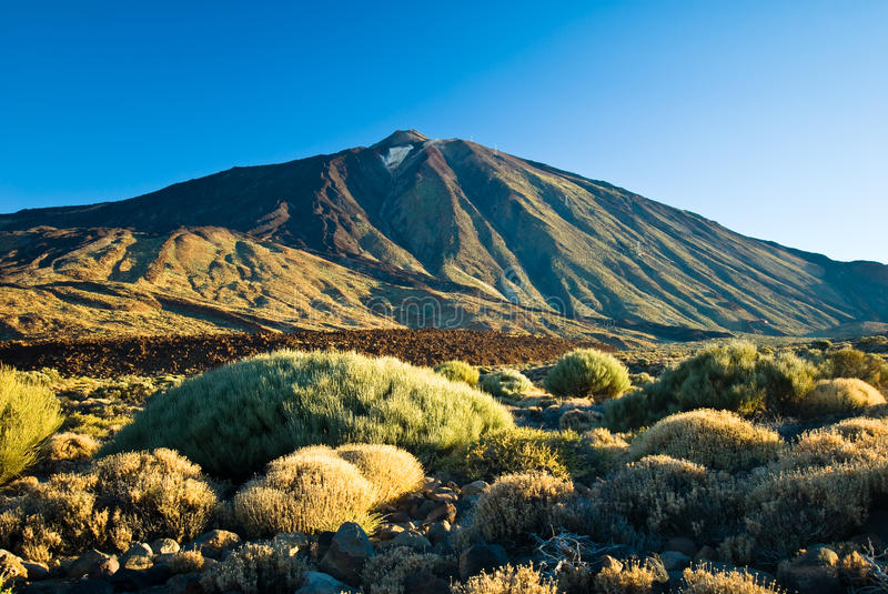 El Teide. Volcanic landscape at El Teide in Tenerife stock images