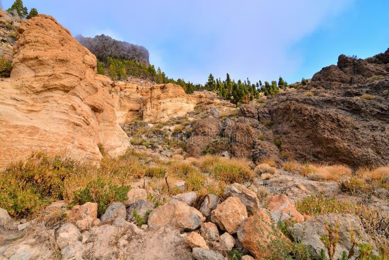 El Teide National Park Tenerife. Canary Islands Spain stock photography