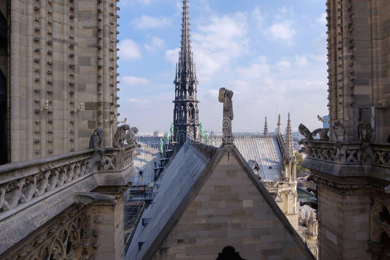 el tejado de la catedral del Notre-Dame de Paris fotografía de archivo libre de regalías
