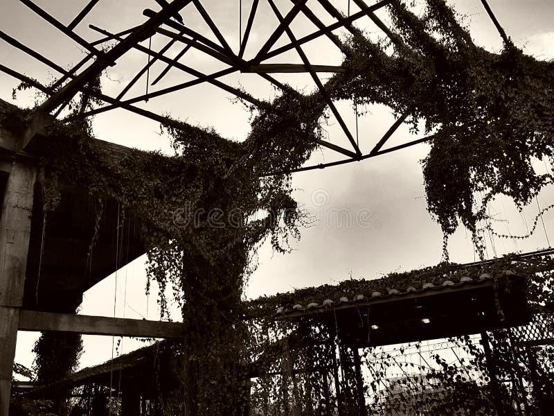 El tejado de un astillero abandonado ha dado vuelta en un estilo arquitectónico del structuralist imagenes de archivo