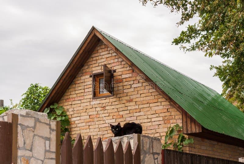 El tejado verde de la casa del ladrillo y del gato negro se está sentando en piedra debajo de ella en día de verano fotos de archivo libres de regalías