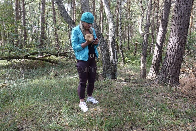 El telefoniert de la Señora en el wald Birken Otternhagener amarra fotos de archivo libres de regalías
