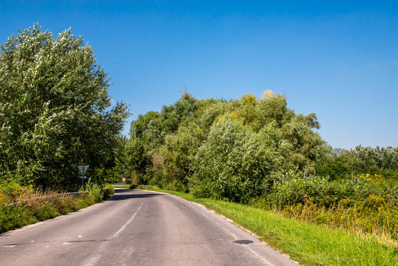 El tercer grado de Asphalth curvó el camino eslovaco del campo cerca del bosque, verano imagenes de archivo