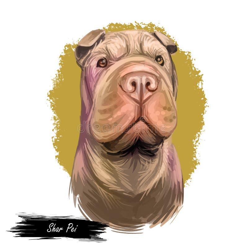 El tipo criado en línea pura de Shar Pei de perro originó del arte digital de China Retrato aislado de la acuarela del cierre del libre illustration