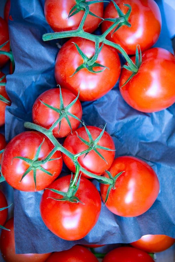 El tomate del racimo es una verdura imagenes de archivo