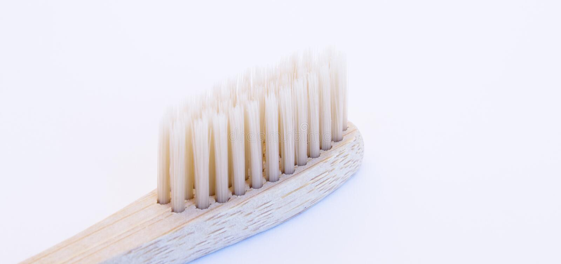 El tootbrush de madera aisló en un fondo blanco fotografía de archivo