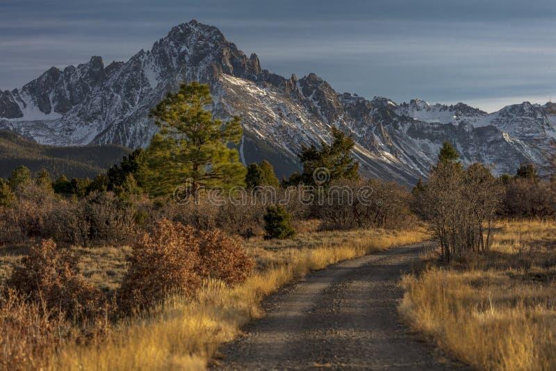 El top de área silvestre de los pinos muestra el camino para montar Sneffels imagen de archivo