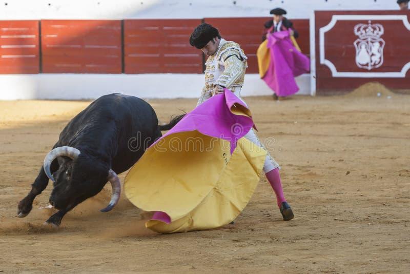 El torero español Curro Diaz que saluda el público con su imagen de archivo