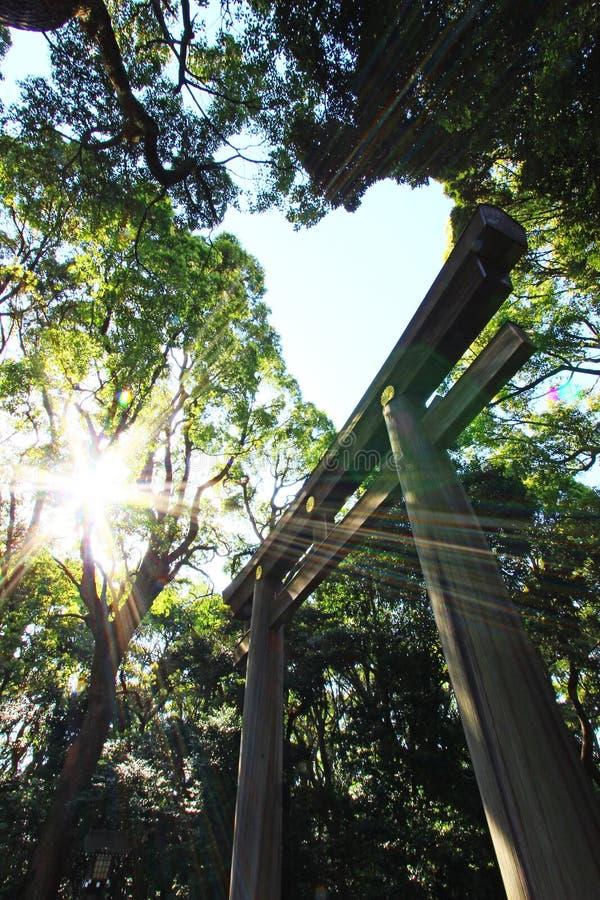 Download El Torii De Madera Y El Sol Foto de archivo - Imagen de japón, travieso: 44853316