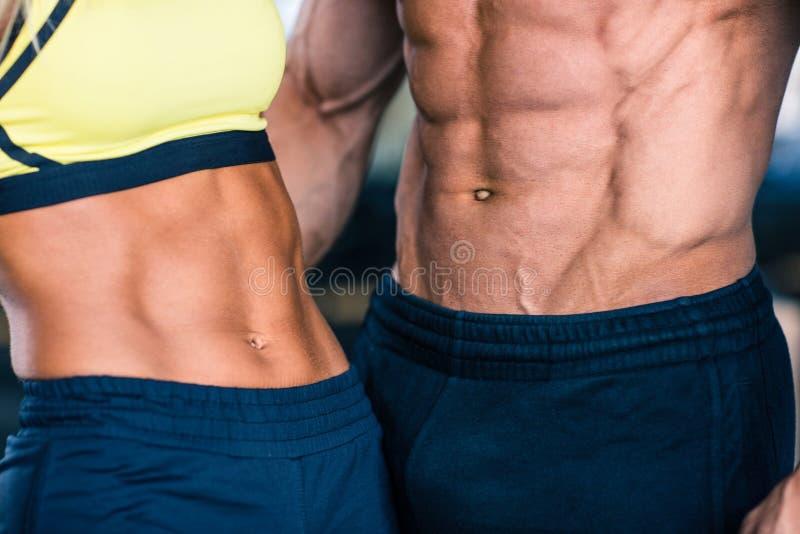 El torso del hombre muscular y de la mujer deportiva imagen de archivo libre de regalías
