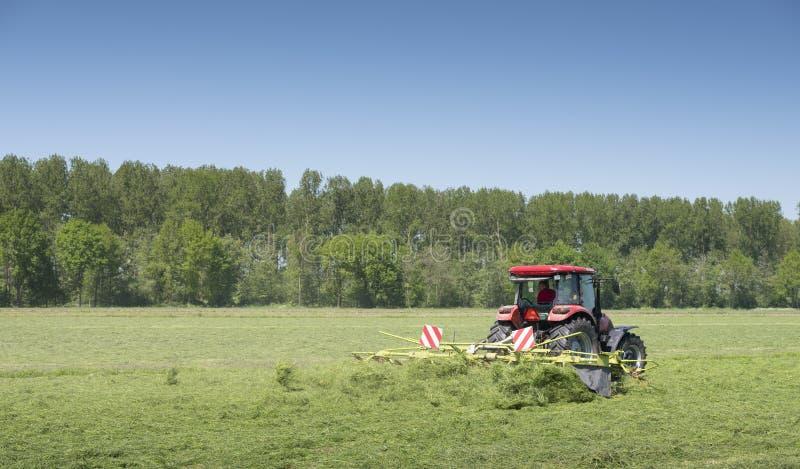 El tractor y la hierba Turner funcionan en prado holandés en la provincia de Holanda Meridional en los Países Bajos fotografía de archivo libre de regalías